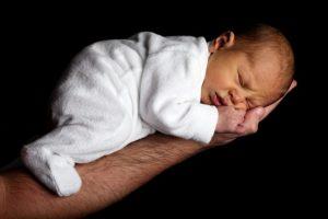mustela baby